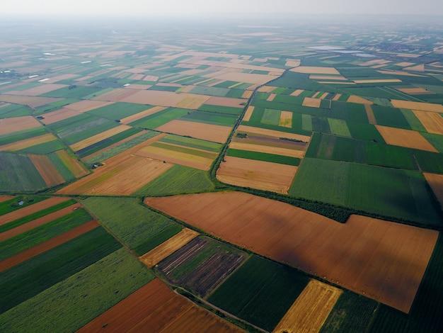 Luftbildfoto der vogelaugen von der fliegenden drohne der felder vor der ernte im sommer auf dem land.