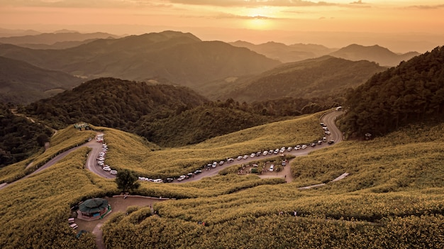 Luftbildlandschaft des berges in der dämmerungszeit-naturblume tung bua tong mexikanisches sonnenblumenfeld, mae hong son, thailand