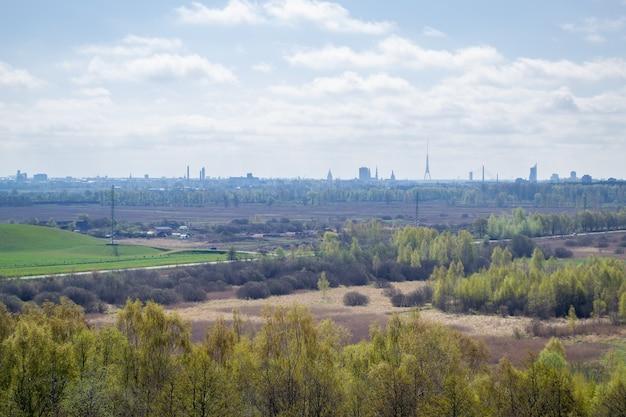 Luftbildspitzen von bäumen und stadt im hintergrund