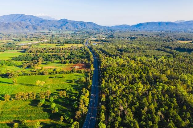 Luftdraufsichtkiefernwaldutopie und landwirtschaftliche nutzfläche mit dem langen weg, der die stadt in chiang mai thailand zur morgenzeit anschließt