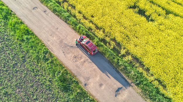 Luftdrohnenansicht des familienautos in einem gelben feld