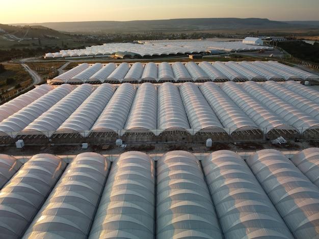 Luftdrohnenansicht eines riesigen gewächshauses für den anbau von gemüse im gewächshaus landwirtschaft