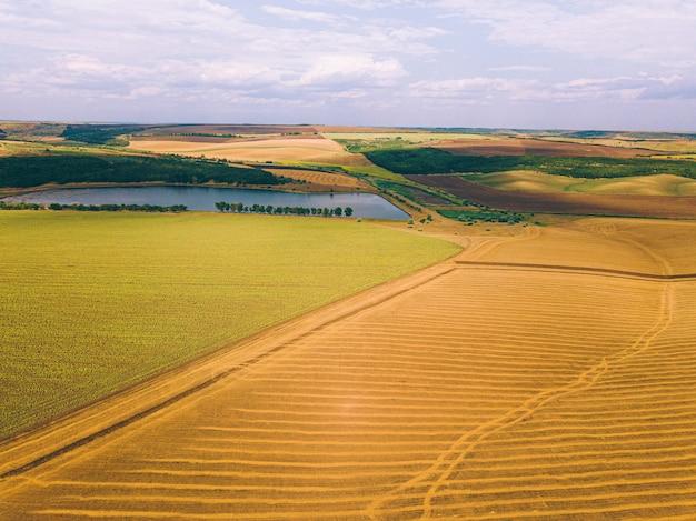 Luftdrohnenfoto der erstaunlichen landschaft mit ernten und see, landwirtschaftskonzept.