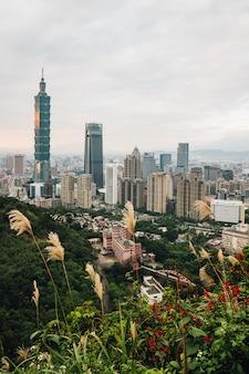 Luftpanorama über im stadtzentrum gelegenem taipeh mit wolkenkratzer taipehs 101 mit bäumen auf dem berg und gras blüht im vordergrund in der dämmerung von xiangshan (elefant-berg).