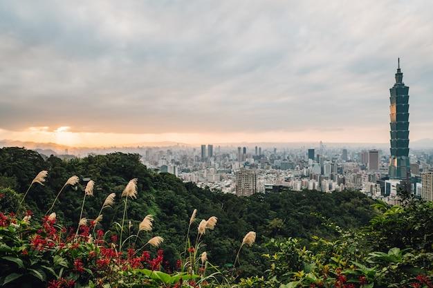 Luftpanorama über im stadtzentrum gelegenem taipeh mit wolkenkratzer taipehs 101 mit bäumen auf den berg- und grasblumen