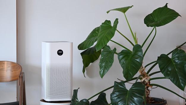 Luftreiniger und zimmerpflanze im wohnzimmer. für frische luft und gesundes lebenskonzept.