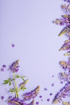 Lupinenblumen auf violettem papierhintergrund