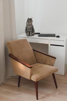 Lustige katze und ein gemütlicher stuhl im wohnzimmer