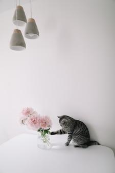 Lustige katze und eine vase mit blumen auf einem tisch im hellen raum