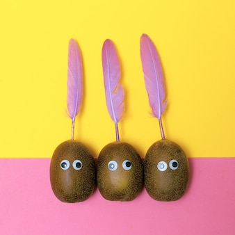 Lustige kreative kiwi mit federn. minimale süßigkeits-flat-lay-kunst