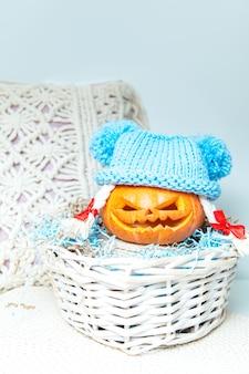 Lustiger kürbis mit zöpfen in einem hut in einem korb. jacks laterne. ungewöhnliches halloween, humor.