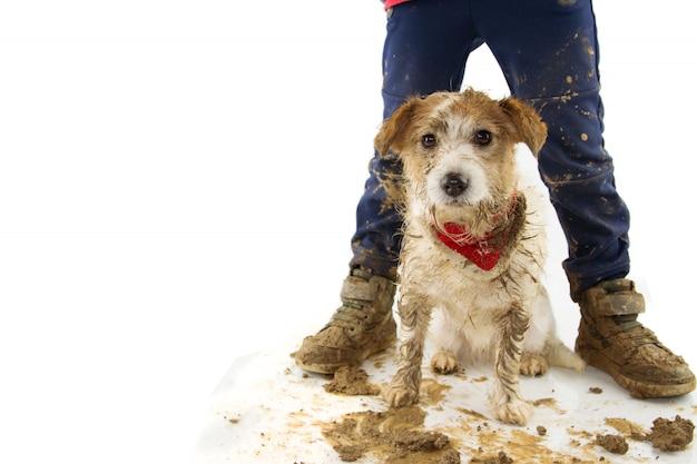 Lustiger schmutziger hund und kind. welpe und junge tragen stiefel nach dem spiel in einer schlammpfütze.