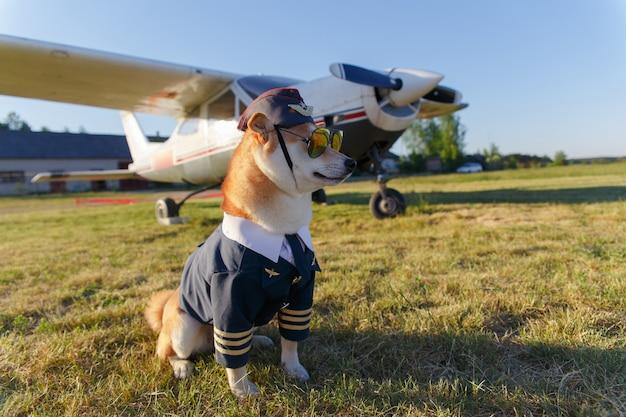 Lustiges foto des shiba inu hundes im pilotenanzug am flughafen