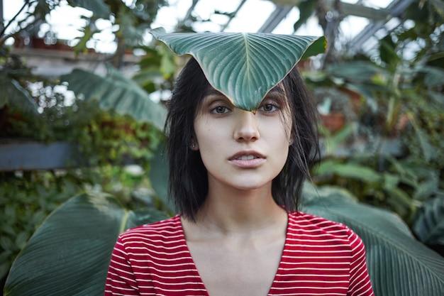 Lustiges mädchen des kaukasischen aussehens, das im grün mit großem grünem blatt auf stirn aufwirft. bild der attraktiven jungen gärtnerin in der freizeitkleidung, die im gewächshaus arbeitet und sich um verschiedene pflanzen kümmert