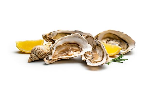 Luxus-set aus frischen delikatessen-meeresaustern und schnecken mit zitronen und gemüse, die auf weißer oberfläche isoliert sind