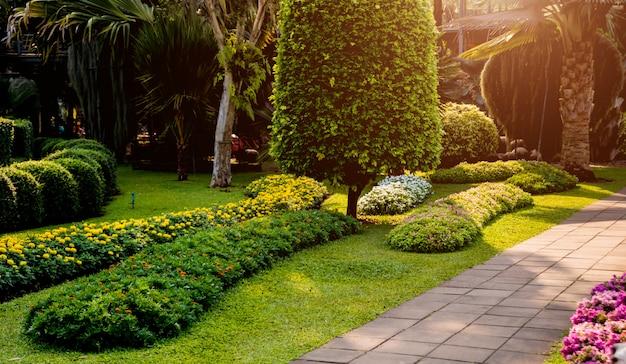 Luxuslandschaftsgestaltung des tropischen gartens. schöne aussicht auf tropische landschaft