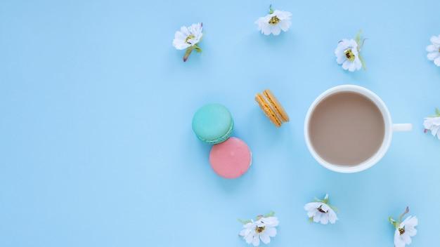 Macarons und gänseblümchen