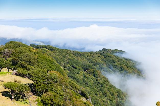 Madeira-berglandschaft unter einem blauen himmel