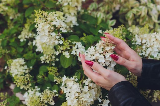 Mädchen berührt blühenden weißen zweig mit hand.