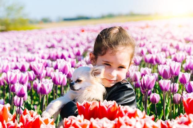 Mädchen, das auf tulpenfeldern in der region amsterdam, niederlande sitzt. magische niederländische landschaft mit tulpenfeld