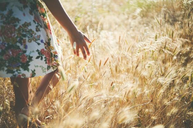 Mädchen, das den weizen am sonnenuntergang berührt