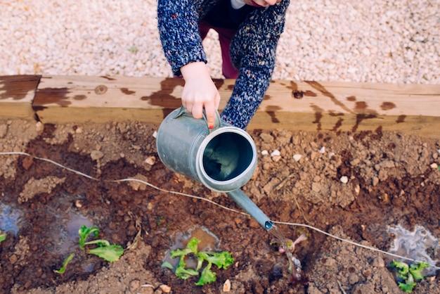 Mädchen, das eine gießkanne verwendet, um einen garten an ihrer schule zu wachsen.