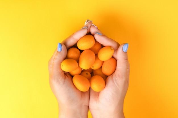Mädchen, das eine handvoll reife kumquat auf einem gelben hellen hintergrund, draufsicht hält