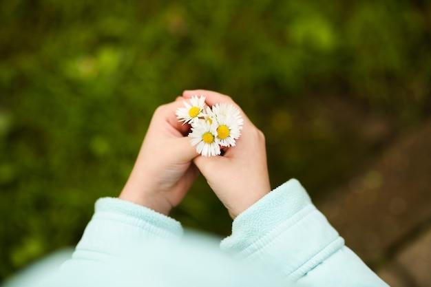 Mädchen, das einen strauß gänseblümchen in der hand hält, nahaufnahme