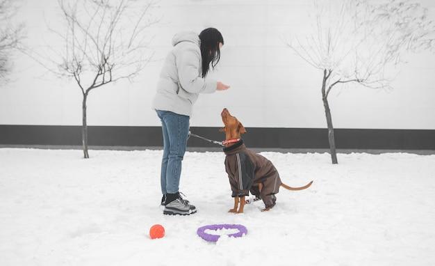 Mädchen, das winterkleidung auf einem hund für eine leine trägt
