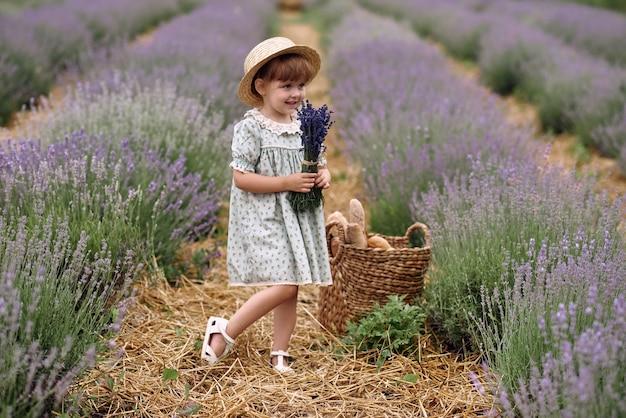 Mädchen geht auf einem lavendelfeld blumen sammeln.