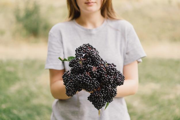 Mädchen hält in den händen cluster obst schwarzer holunder sambucus nigra schwarzer holunder europäischer schwarzer holunder...