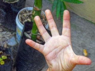Mädchen hand, helfen