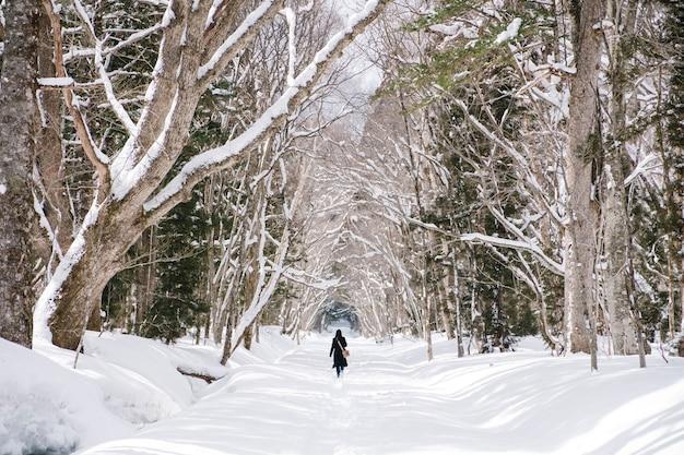Mädchen im schneewald am togakushi-schrein, japan