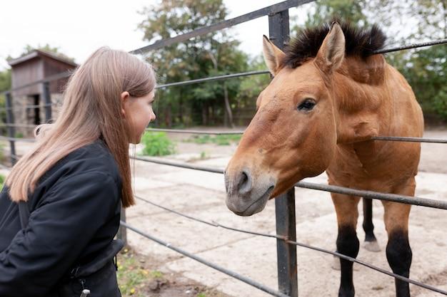 Mädchen in kontakt mit einem pferd im zoo.
