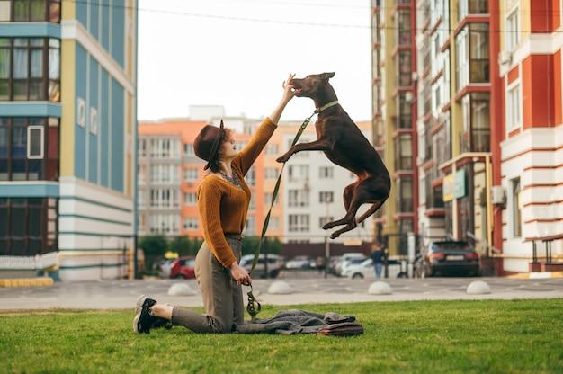 Mädchen in stilvollen kleidern trainiert den welpen auf einem spaziergang im hof