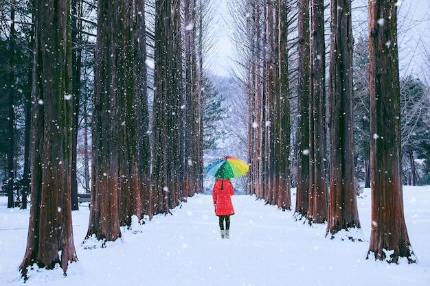 Mädchen mit buntem regenschirm im reihenbaum, nami-insel in südkorea. winter in südkorea.