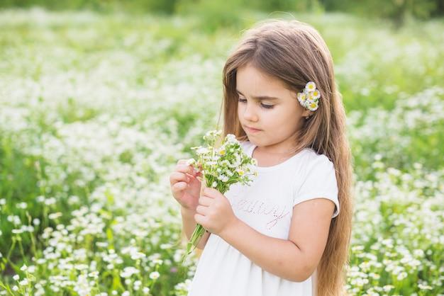 Mädchen mit dem langen haar, das weiße blumen betrachtet, sammelte durch sie auf dem gebiet