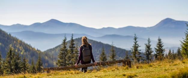 Mädchen mit dem rucksack, der auf dem defekten baumstamm genießt ansicht von bergen sitzt