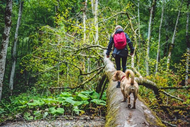 Mädchen mit einem hund, der im wald wandert