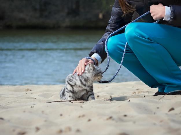Mädchen mit einer katze.
