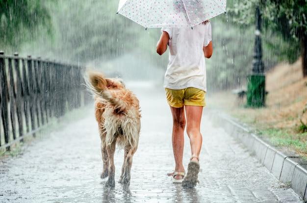 Mädchen mit golden retriever hund während des regens, der draußen unter regenschirm läuft. jugendliches kind mit hündchenhaustier, das an regnerischem tag geht