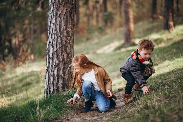 Mädchen mit ihrem kleinen bruder zusammen im wald Kostenlose Fotos