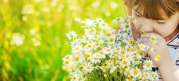 Mädchen mit kamille. foto. naturblumen.