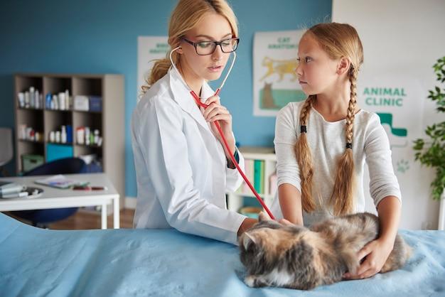 Mädchen mit kranker katze bei einem tierarzt
