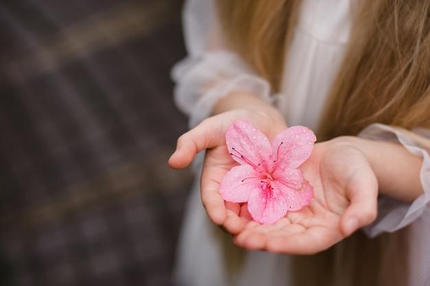 Mädchen schnüffelt blumen von azaleen. blühende azaleen im park