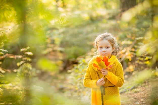 Mädchen spielt mit fallenden blättern. kinder im park. kinder, die im fallwald wandern. kleinkindkind unter einem ahornbaum an einem sonnigen oktober-tag.