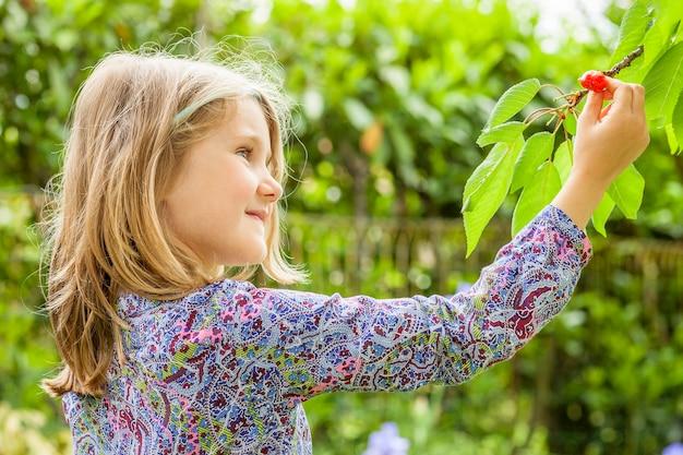 Mädchen und kirschbaum mit sommersonne im hintergrund