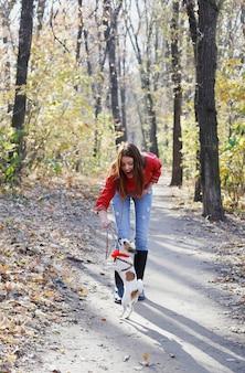 Mädchenspaziergang mit toy terrier welpen im park, hundetraining mit holzstab