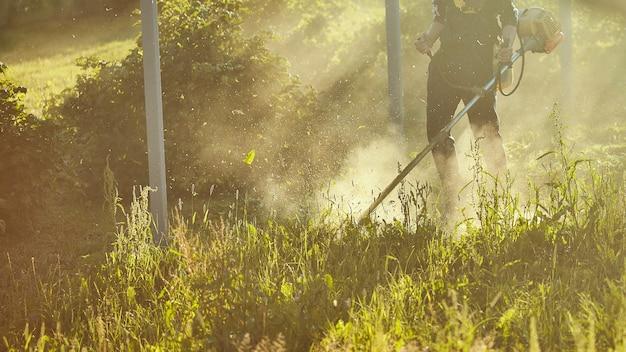 Mähen sie den rasentrimmer. das mähen von hohem gras mit einem trimmer. selektiver fokus auf ungeschnittenem tawa und zerstreuen partikel des geschnittenen grases. abendlichter bahnen sich ihren weg durch den nebel