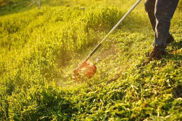 Mähtrimmer - arbeitskraftausschnittgras im grünen yard bei sonnenuntergang.